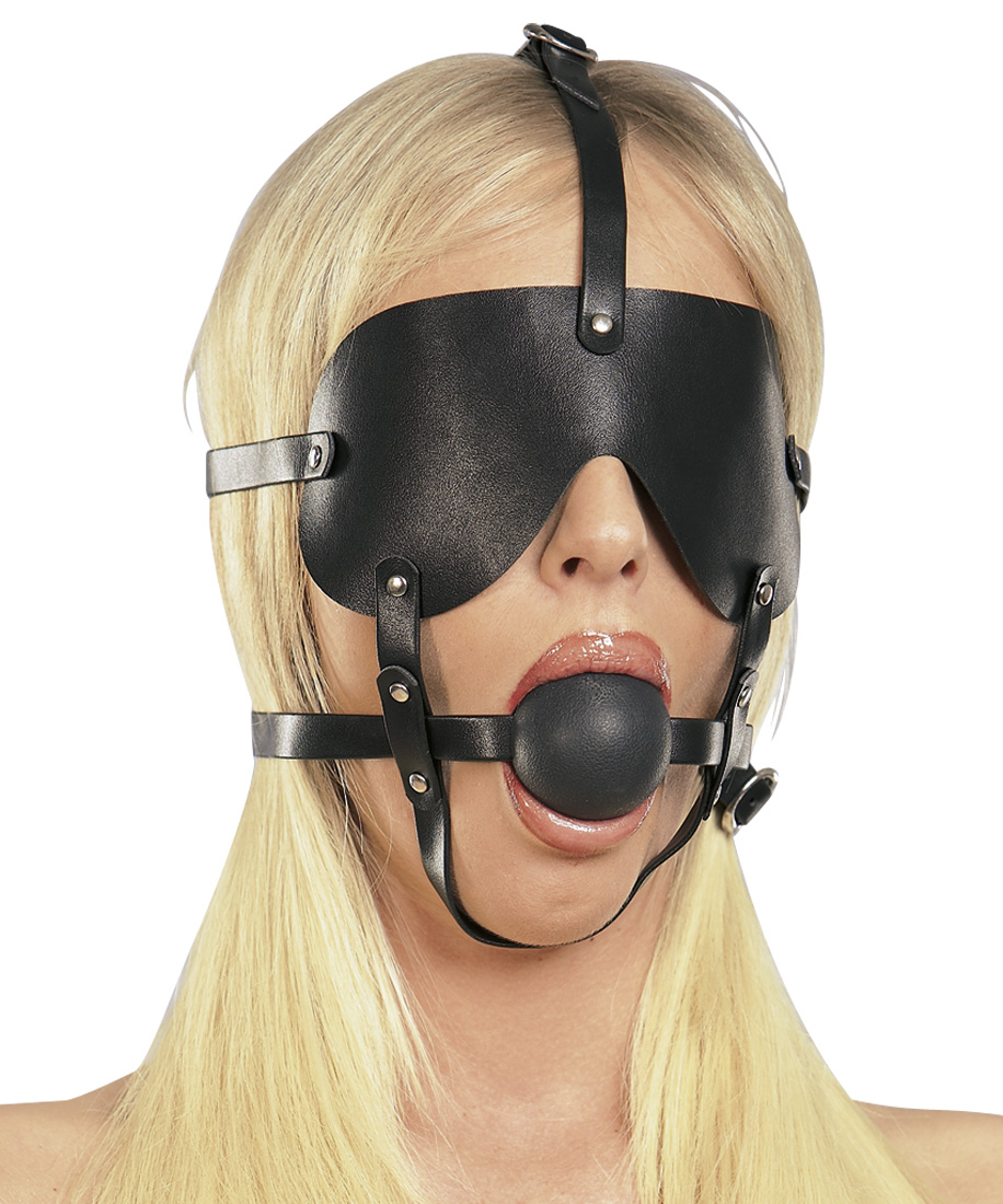 Harness For Head With Gag